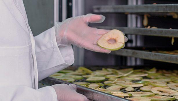 Proceso de liofilizado de fruta